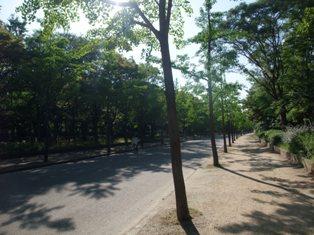 oosakacastlepark.jpg