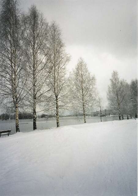 talvi 2001.jpg