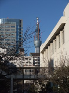 ryogoku and skytree.jpg