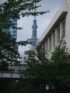 ryogoku skytree.jpg
