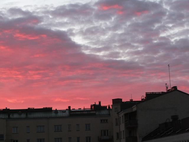 punainen aamu3.jpg