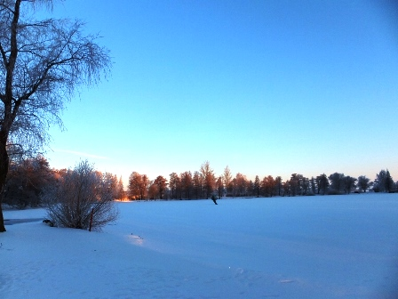 talvi20.jpgmini.jpg