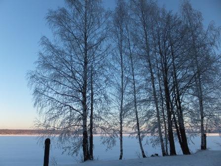 talvi30.jpgmini.jpg