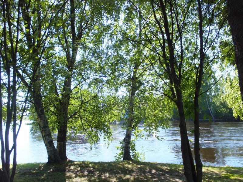 joensuu joki9.jpg