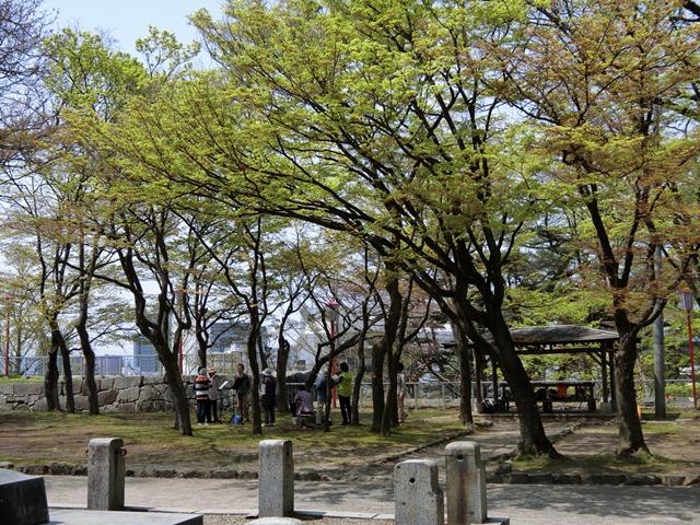 moriokajoushikouen.jpg