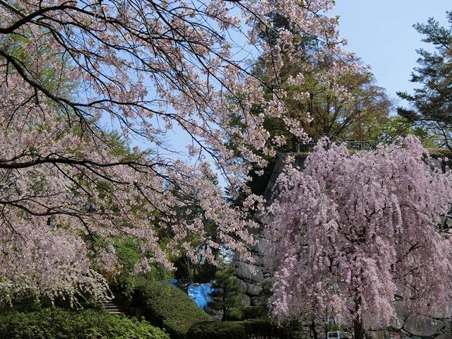 moriokajoushikouen2.jpg